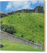 The Fortress At St. Kitts Wood Print