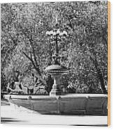 The Fountain And The Ride In Black And White Wood Print