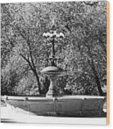 The Fountain In Black And White Wood Print