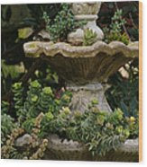 The Fountain Painterly Wood Print