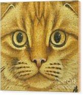 The French Orange Cat Wood Print