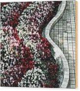The Garden's Edge Wood Print