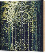 The Gate In The Grotto Of The Redemption Iowa Wood Print