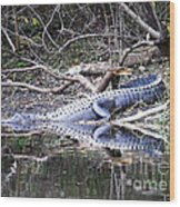 The Gator That Lives Under The Bridge Wood Print