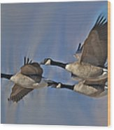 The Geese Wood Print
