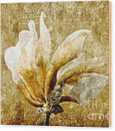 The Golden Magnolia Wood Print by Andee Design