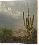 The Golden Saguaro  Wood Print