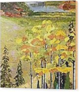 The Gore Range Wood Print