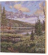 The Gore Range Wood Print by W  Scott Fenton