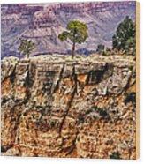 The Grand Canyon Iv Wood Print
