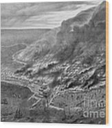 The Great Chicago Fire, 1871 Wood Print