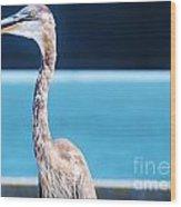 The Great Heron Wood Print