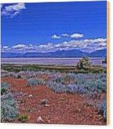 The Great Salt Lake From Antelope Island Wood Print