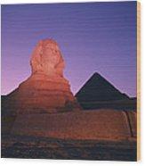 The Great Sphinx Is Illuminated Wood Print