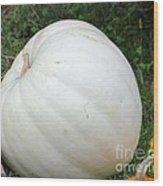 The Great White Pumpkin Wood Print