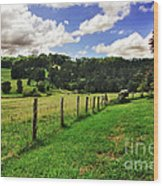 The Green Green Grass Of Home Wood Print