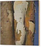 The Gum Tree Wood Print