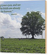 The Harvest Wood Print