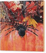 The Harvest Spider Wood Print