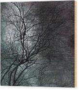 The Haze Of The Moon Wood Print