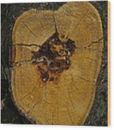 The Heart Of A Tree Wood Print