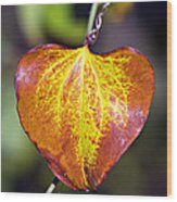 The Heart Of Autumn Wood Print