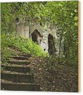 The Hermitage Wood Print