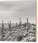 The High Desert  Wood Print