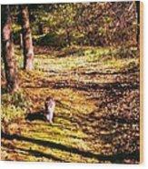 The Hiker Wood Print