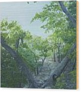 The Hiking Trail Wood Print