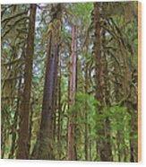 The Hoh Rain Forest Wood Print