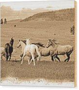 The Horse Herd Wood Print