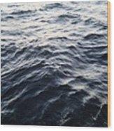 The Hudson Wood Print