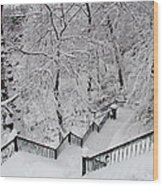 The Hundred Steps In The Snow Wood Print