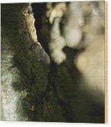 The Initiate Wood Print