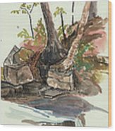 The Jessup Indian Lake Ny Wood Print