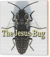 The Jesus Bug Wood Print