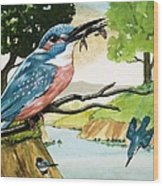 The Kingfisher Wood Print