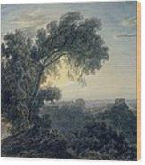 The Lake Of Albano And Castle Gandolfo  Wood Print