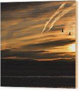 The Last Sunset Wood Print