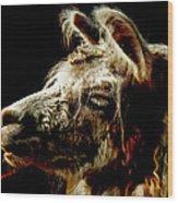The Legendary Llama  Wood Print