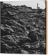 The Lighthouse1 Wood Print