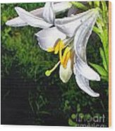 The Lily Wood Print