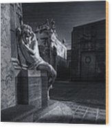 The Little Angel Recoleta Cemetery Ba Wood Print