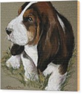 The Little Basset Wood Print by Mary Sparrow