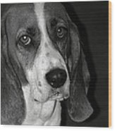 The Little Dog Wood Print