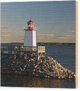 The Little Lighthouse Wood Print