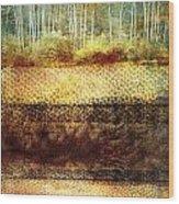 The Losses Reflected Wood Print