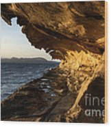 The Malaspina Galleries Wood Print