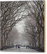 The Mall Central Park Wood Print